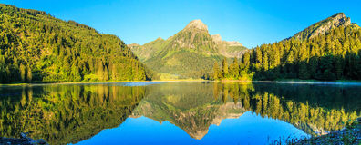 Panorama of Obersee Stock Image