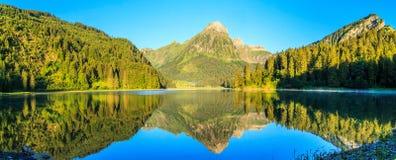 Panorama of Obersee Stock Image
