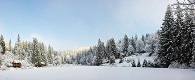 Panorama Of A Winter Morning In The Carpathians Royalty Free Stock Photography