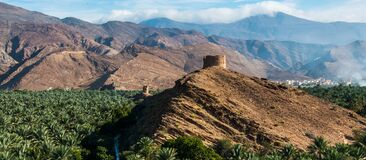 Panorama Of Date Palms & Mountains & Ancient Tower, Oman Stock Photography
