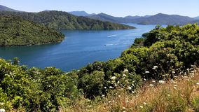 Free Panorama Of Scenic Queen Charlotte Sound In Summer Royalty Free Stock Photos - 140258918