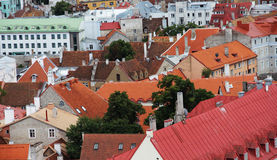 Panorama of old Tallinn roofs Stock Image