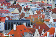 Panorama of old Tallinn roofs Stock Photos