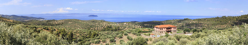 Panorama of olive groves and estates on Aegean coast. Royalty Free Stock Photo