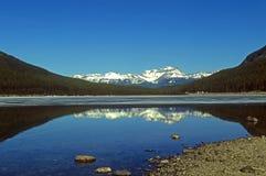 Panorama op Canadese Bergen Rockies stock foto's