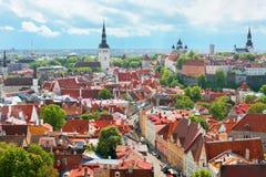 Panorama op de Oude Stad van Tallin Stock Afbeelding