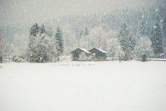 Panorama op twee huizen en bomen in een zware sneeuwvaldag royalty-vrije stock fotografie