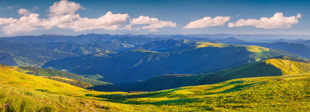 Panorama ot the summer sunny morning in carpathian mountains Stock Photos