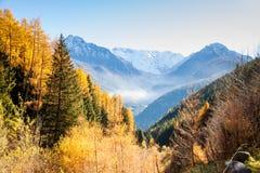 Panorama otoñal con las hojas y las montañas coloridas Foto de archivo libre de regalías