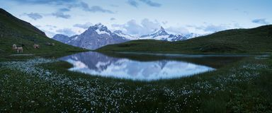 Panorama over the Bachalpsee during the famous hiking trail from First to Grindelwald Bernese Alps, Switzerland. You can have great views on mountains like the royalty free stock photo
