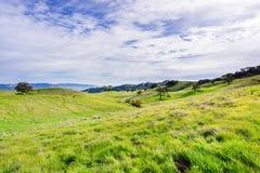 Panorama over de heuvels en de vallei van de Open plekdomein van de Coyotevallei, Morgan Hill, baaigebied de Zuid- van San Franci royalty-vrije stock fotografie