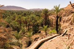Panorama over oase van dadelpalmen, Figuig, Marokko stock afbeelding