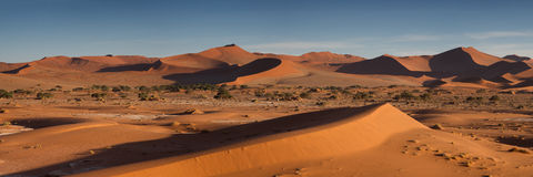 Panorama over the Sossusvlei dune field Royalty Free Stock Images
