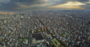 Panorama over Tokyo. Taken from SkyTree Stock Photo