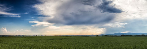Panorama over a wheat field with a beautiful cloudscape Stock Image