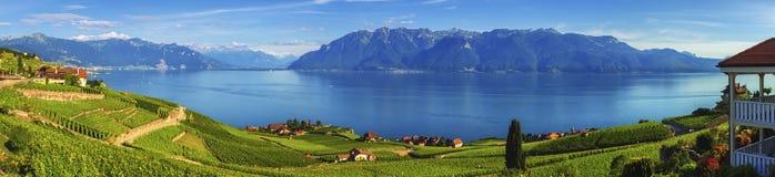 Panorama på den Lavaux regionen, Vaud, Schweiz fotografering för bildbyråer