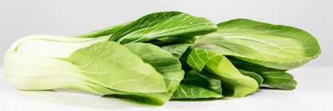 Panorama with pak choi. In front of white and grey background Royalty Free Stock Photo