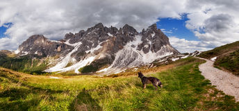 Panorama of Pale di San Martino mountain Royalty Free Stock Photo