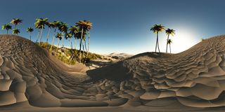 Panorama of palms in desert. Made with the one 360 degree lense camera without any seams. ready for virtual reality Royalty Free Stock Photography