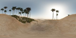 Panorama of palms in desert. made with the one 360 degree lense. Camera without any seams. ready for virtual reality. 3D illustration Royalty Free Stock Images