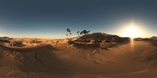 Panorama of palms in desert at sunset. Made with the one 360 degree lense camera without any seams. ready for virtual reality Stock Photos