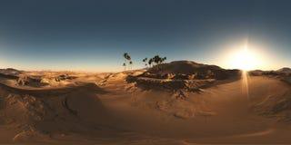 Panorama palmy w pustyni przy zmierzchem Zdjęcia Stock