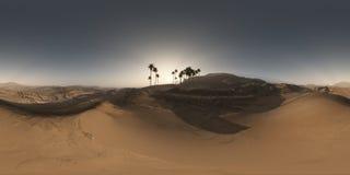 Panorama palmy w pustyni przy zmierzchem Fotografia Stock
