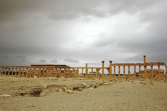Panorama of Palmyra Royalty Free Stock Images