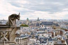 panorama paris Sikt från domkyrkan av vår dam av Paris Royaltyfria Foton
