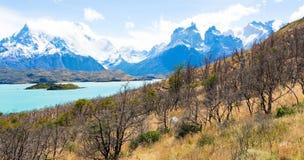 Panorama of patagonia Stock Photos