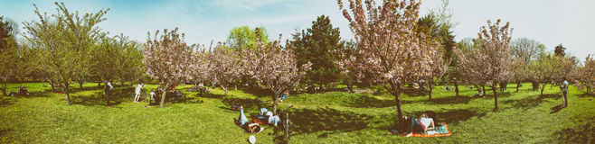 Panorama Of People Having Fun In The Japanese Garden Of Herastrau Public Park Royalty Free Stock Photography