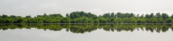 Panorama perfect odbicie drzewa w jeziorze, środkowi bagna Gambia, afryka zachodnia Zdjęcia Stock