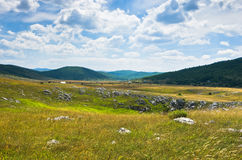 Panorama of Pester plateau landscape Royalty Free Stock Photos