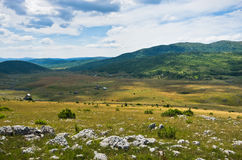 Panorama of Pester plateau landscape royalty free stock photo