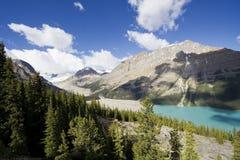 panorama peyto jezioro Zdjęcie Stock