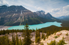 Panorama of Peyto Lake Stock Images