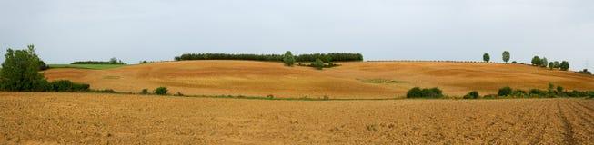 Panorama pflog vor kurzem Ackerland Stockbilder