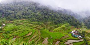 Panorama- philippines by Royaltyfri Fotografi