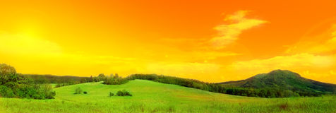 Panorama photo of meadow. In the morning Stock Photo
