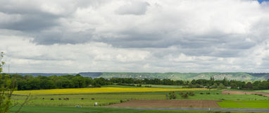 Panorama photo of meadow Stock Photography