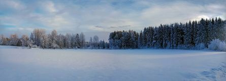 Panorama photo of winter landscape in Hedmark county Norway. Colorful winter wonderland with Forest and field. snowy winter background in december royalty free stock photos