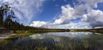 panorama Piękne chmury nad lasowym jeziorem fotografia stock