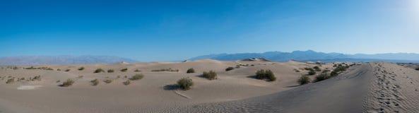 Panorama piano delle dune di sabbia del Mesquite Fotografia Stock