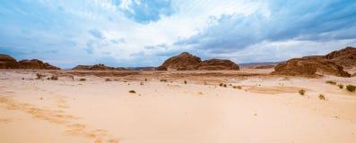 Panorama piaska pustynia Synaj, Egipt, Afryka Obraz Stock