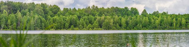 Great lake panorama with green forest royalty free stock photo