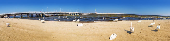 Panorama of pier in Sopot, Poland. Panorama at Sopot molo - the longest wooden pier in Europe Stock Image