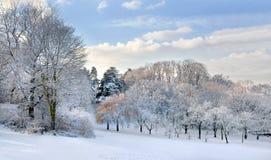 Panorama. Pierwszy śnieg w parku. Fotografia Stock