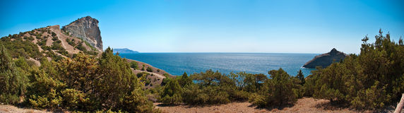 Panorama of pine forest and sea gulf Stock Images