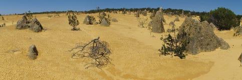 Panorama of Pinnacles Desert, Nambung National Park, West Australia Stock Photography