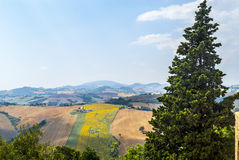 Panorama from Piticchio (Ancona) Royalty Free Stock Photos